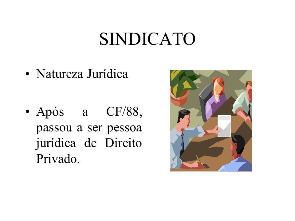 SINDICATO Natureza Jurídica