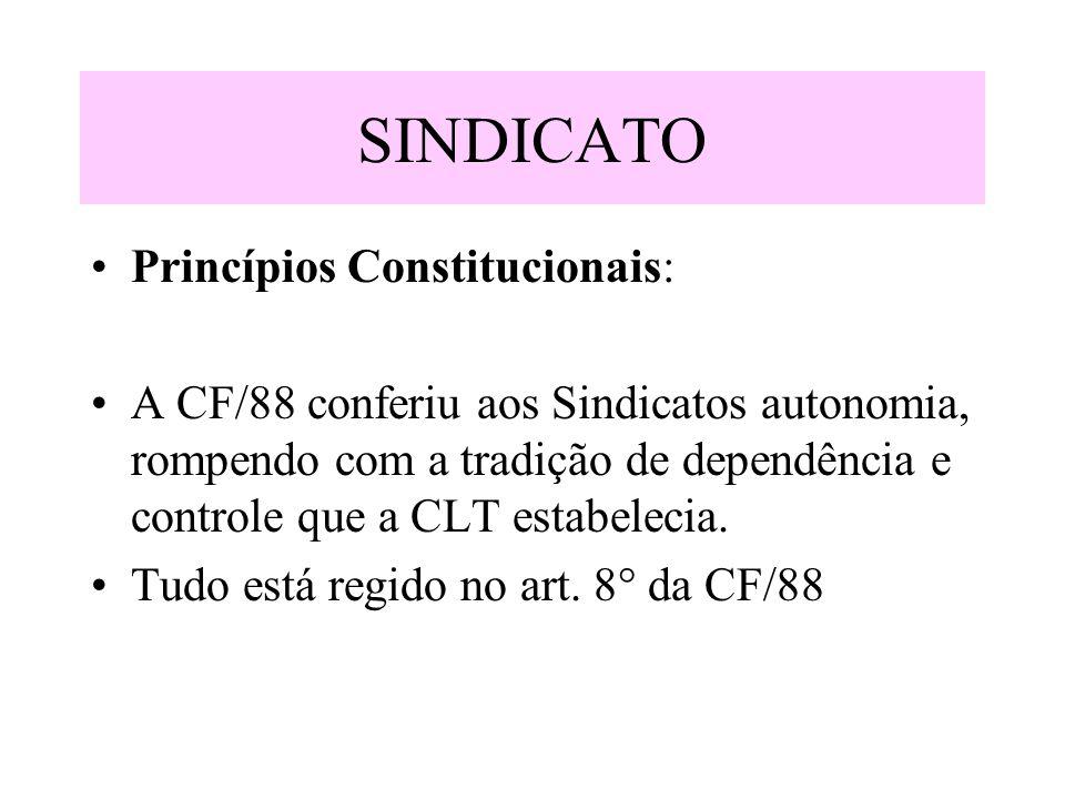 SINDICATO Princípios Constitucionais: