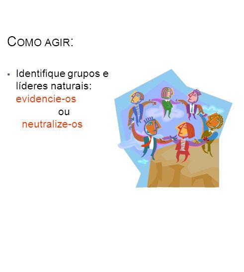 Como agir: Identifique grupos e líderes naturais: evidencie-os ou