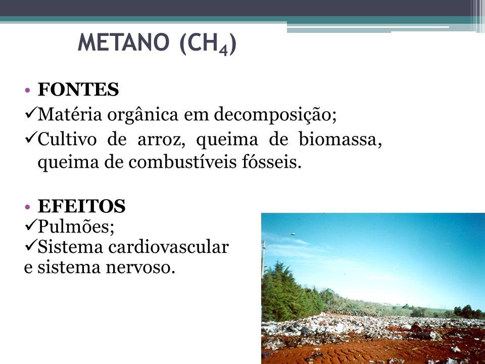 METANO (CH4) FONTES Matéria orgânica em decomposição;