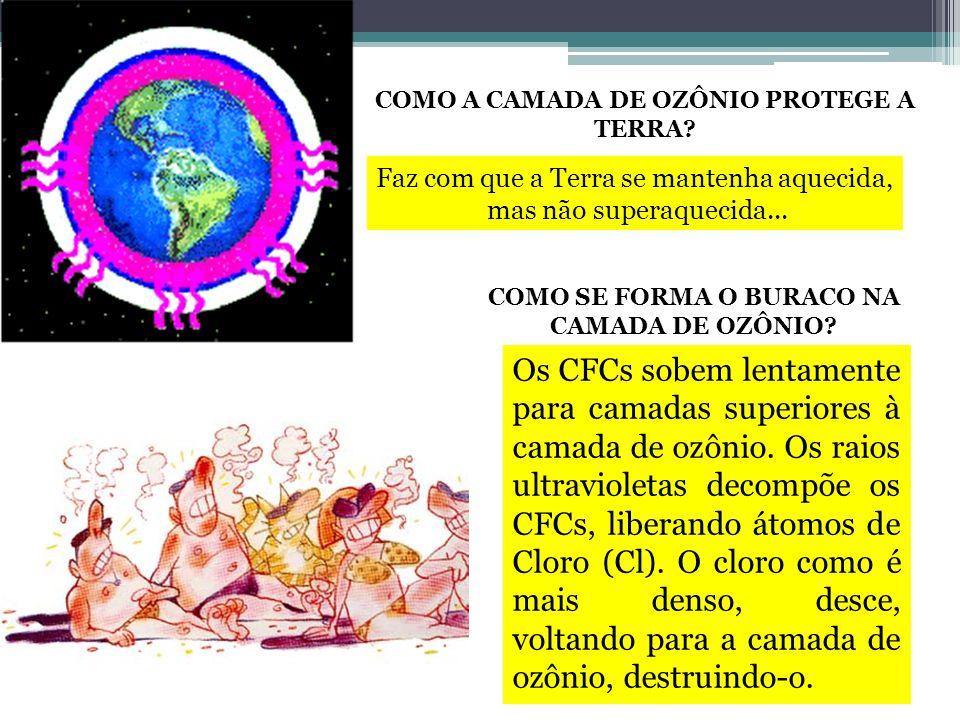 COMO A CAMADA DE OZÔNIO PROTEGE A TERRA