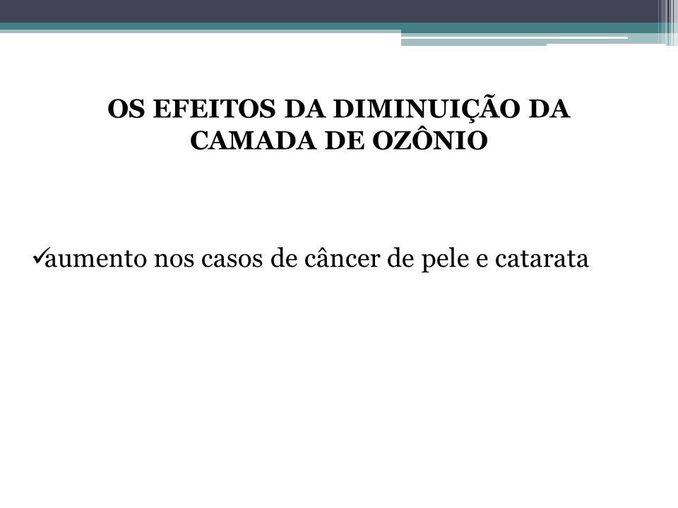 OS EFEITOS DA DIMINUIÇÃO DA CAMADA DE OZÔNIO
