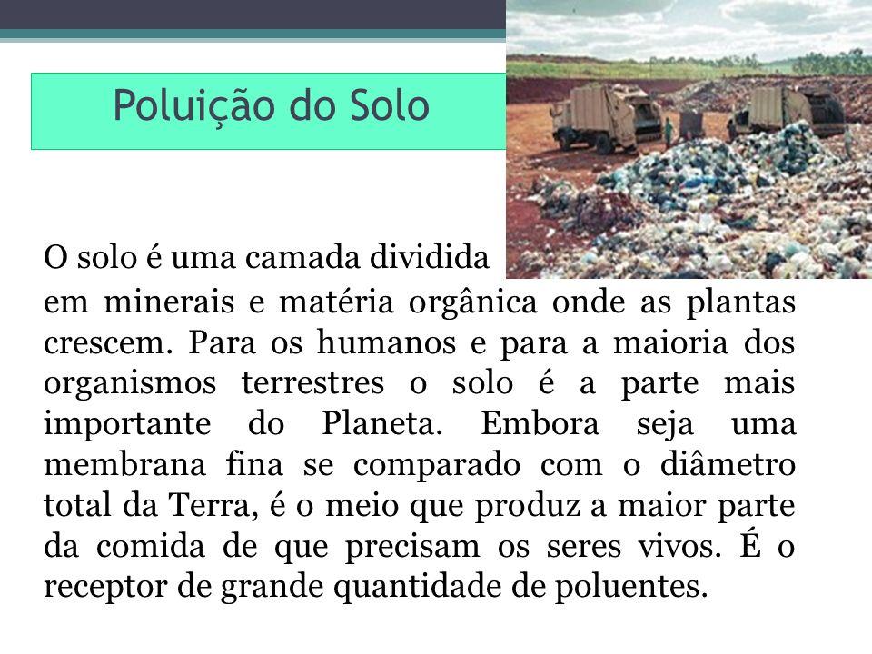 Poluição do Solo O solo é uma camada dividida.