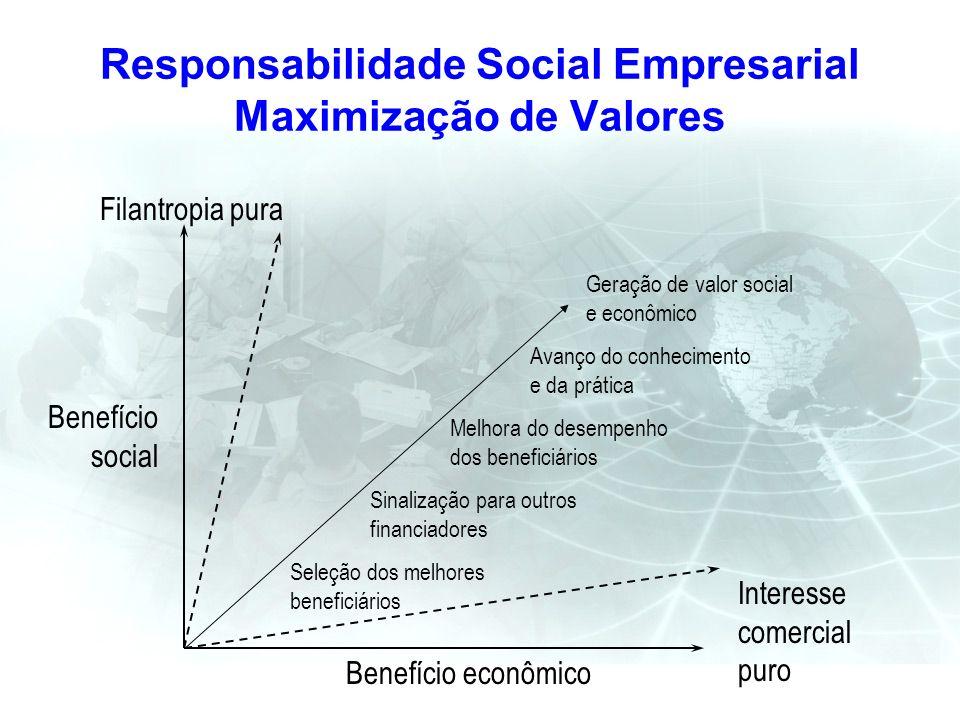 Responsabilidade Social Empresarial Maximização de Valores