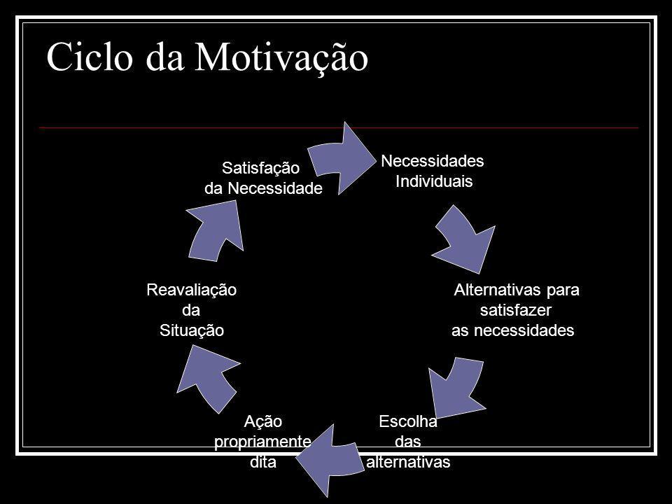 Ciclo da Motivação