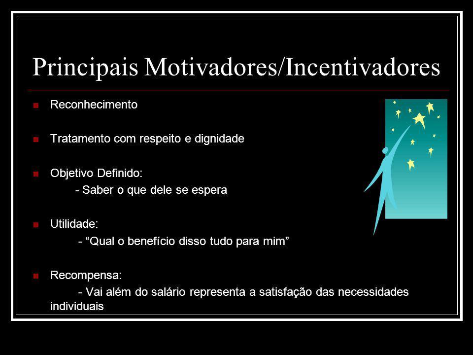 Principais Motivadores/Incentivadores