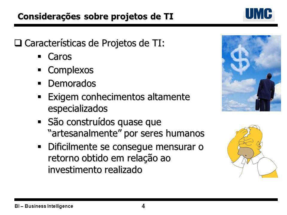 Características de Projetos de TI: Caros Complexos Demorados