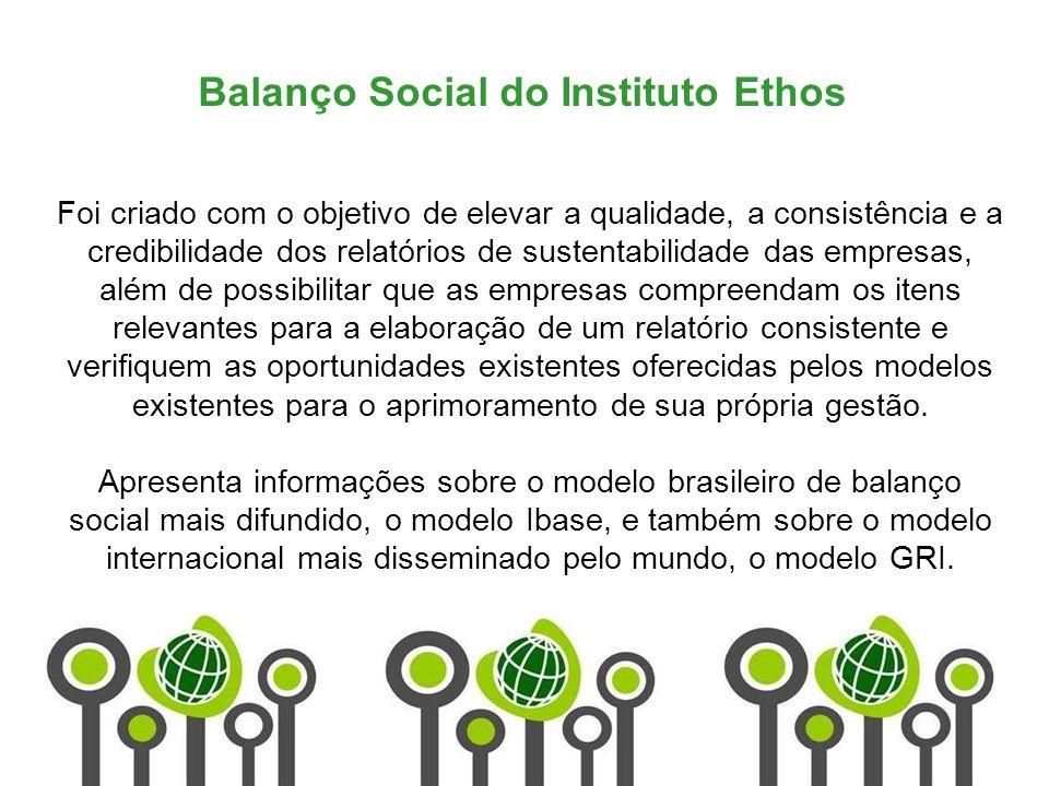 Balanço Social do Instituto Ethos