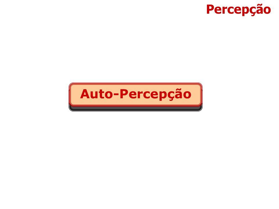 Percepção Auto-Percepção Auto Percepção