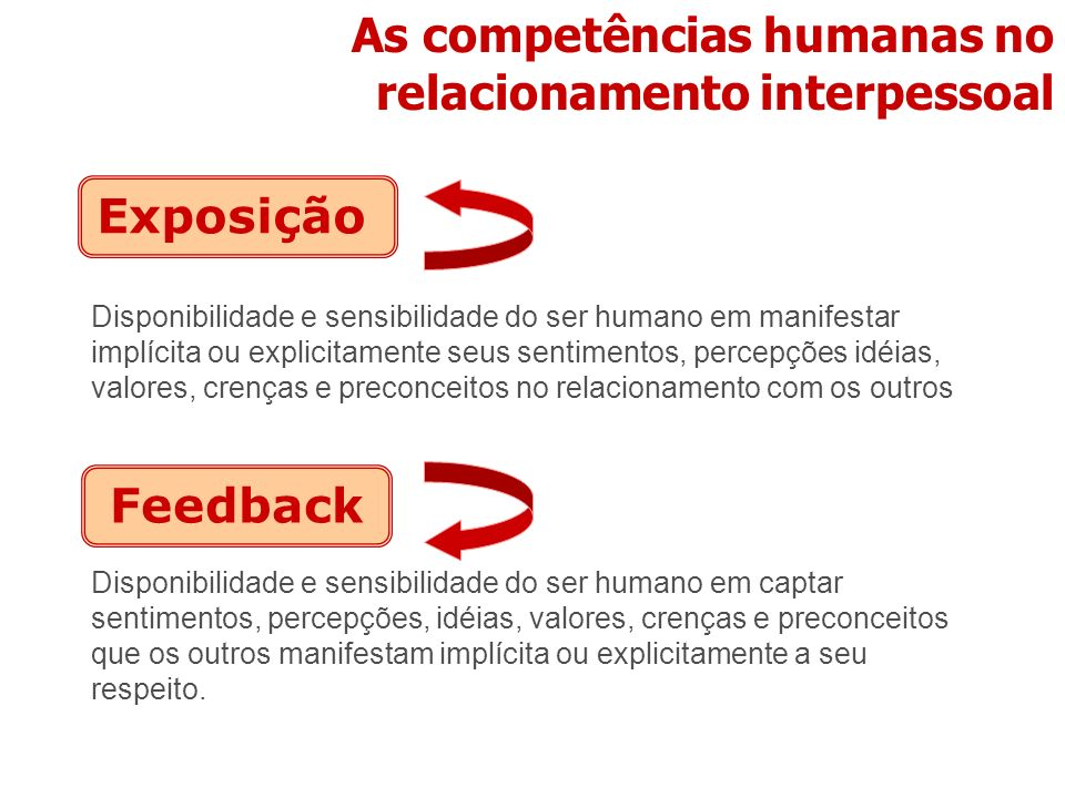 As competências humanas no relacionamento interpessoal