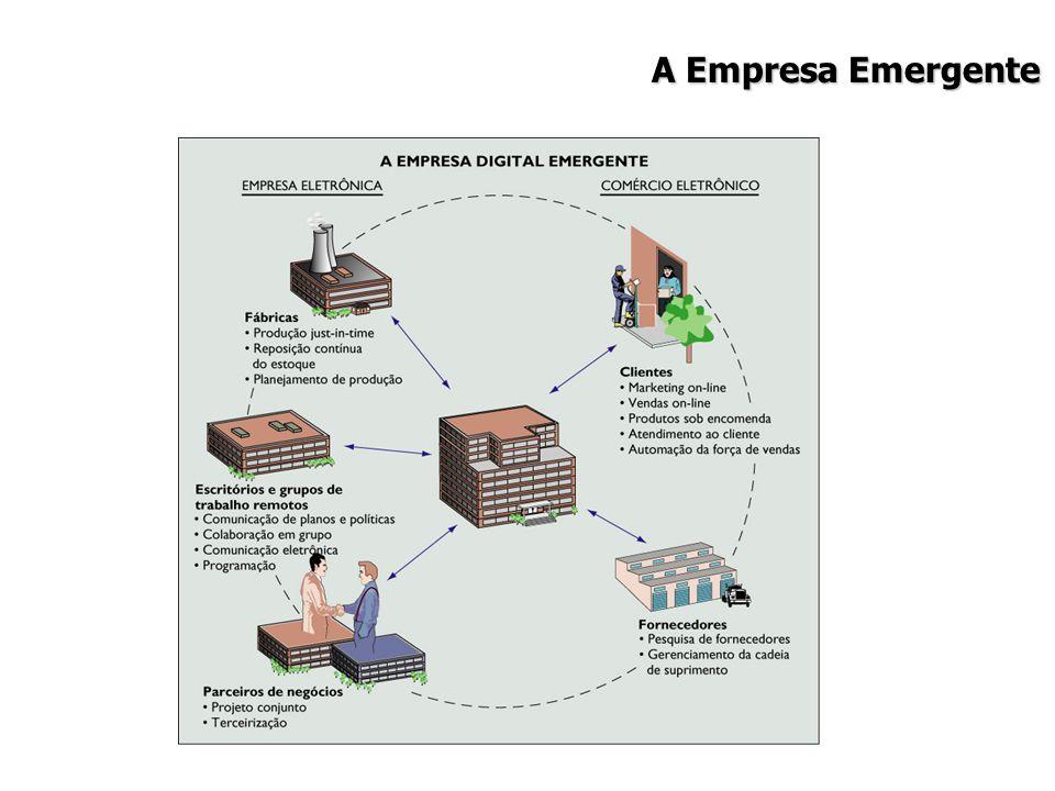 A Empresa Emergente 13