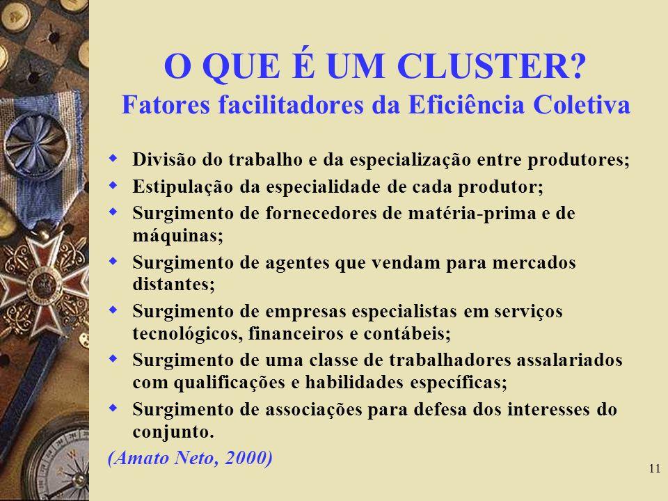 O QUE É UM CLUSTER Fatores facilitadores da Eficiência Coletiva