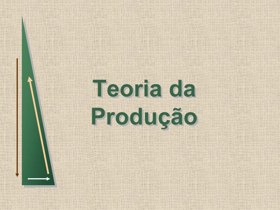 Teoria da Produção 1