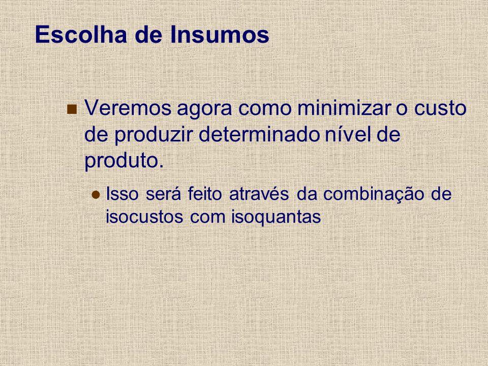 Escolha de InsumosVeremos agora como minimizar o custo de produzir determinado nível de produto.