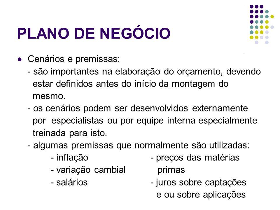 PLANO DE NEGÓCIO Cenários e premissas: