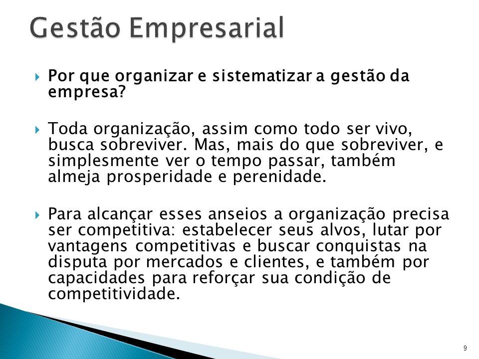 Gestão Empresarial Por que organizar e sistematizar a gestão da empresa