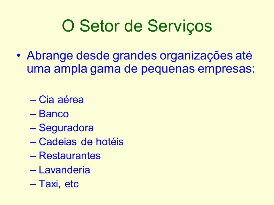 O Setor de Serviços Abrange desde grandes organizações até uma ampla gama de pequenas empresas: Cia aérea.