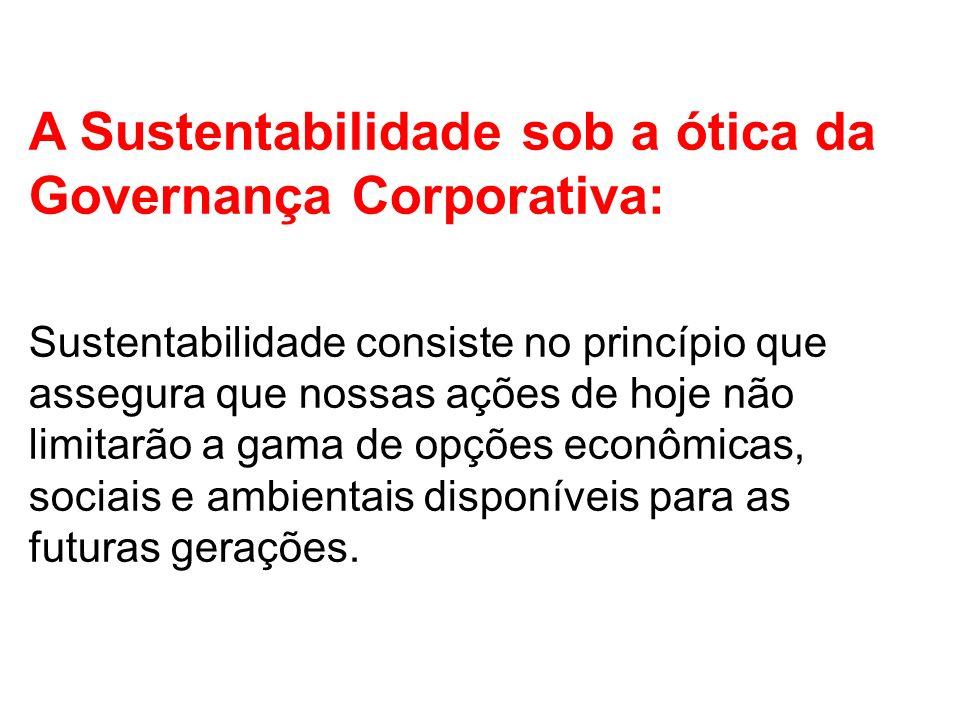 A Sustentabilidade sob a ótica da Governança Corporativa: