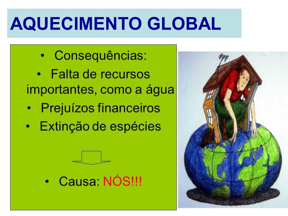 AQUECIMENTO GLOBAL Consequências: