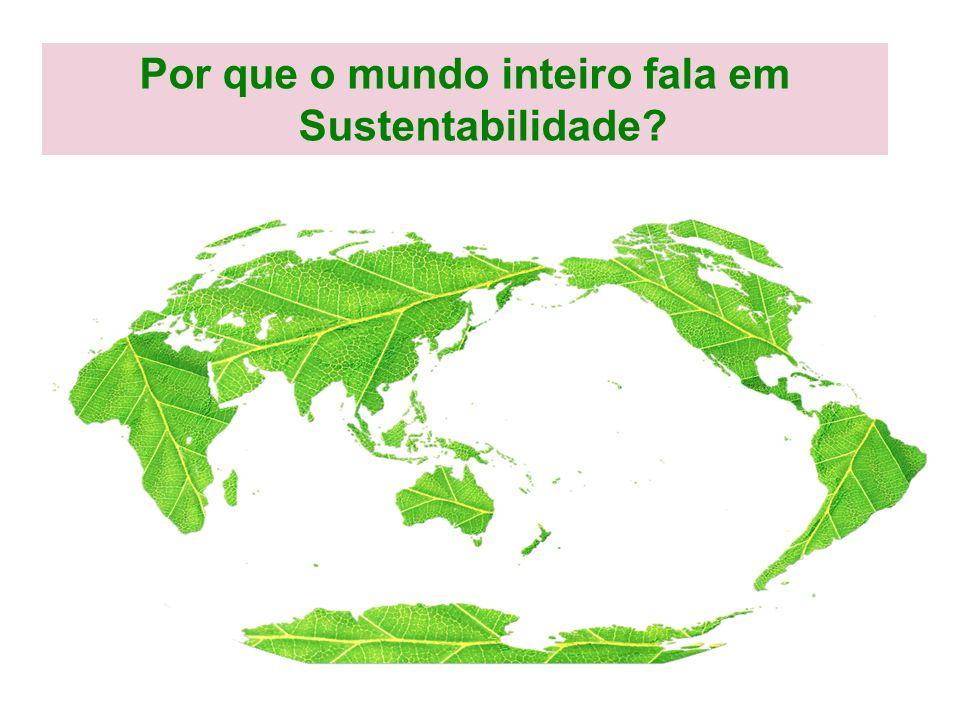 Por que o mundo inteiro fala em Sustentabilidade