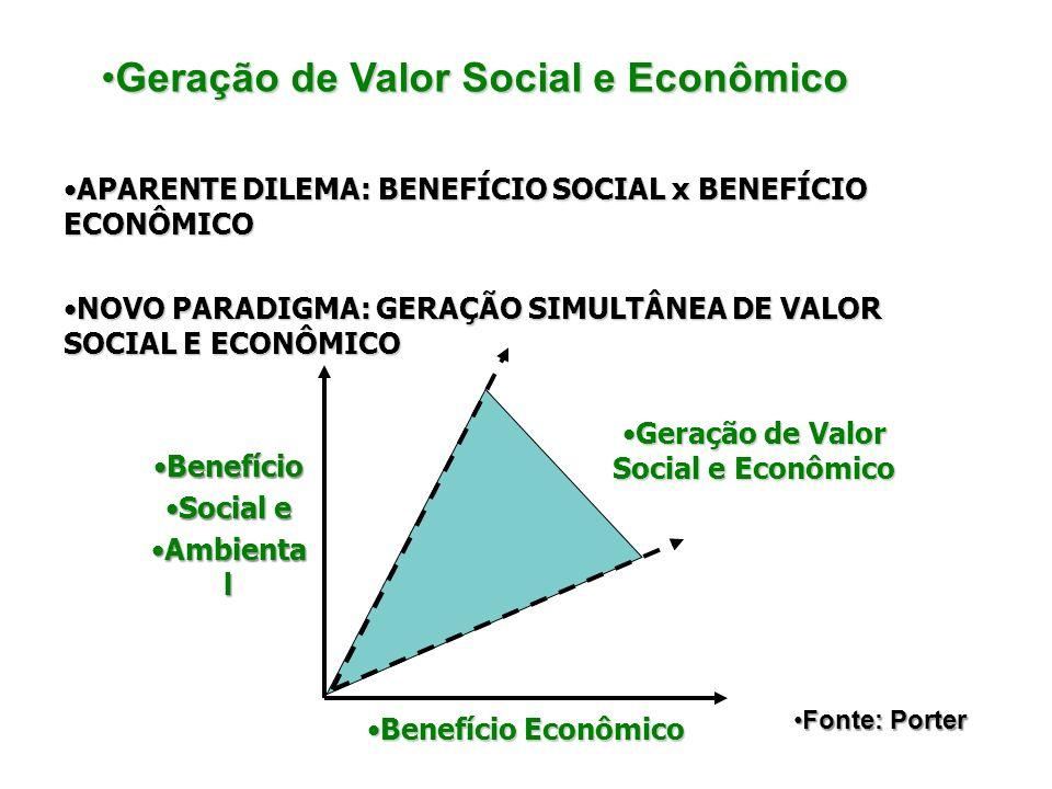 Geração de Valor Social e Econômico