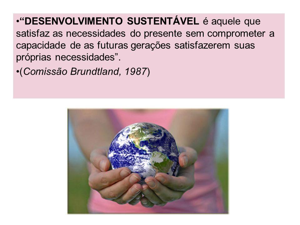 DESENVOLVIMENTO SUSTENTÁVEL é aquele que satisfaz as necessidades do presente sem comprometer a capacidade de as futuras gerações satisfazerem suas próprias necessidades .