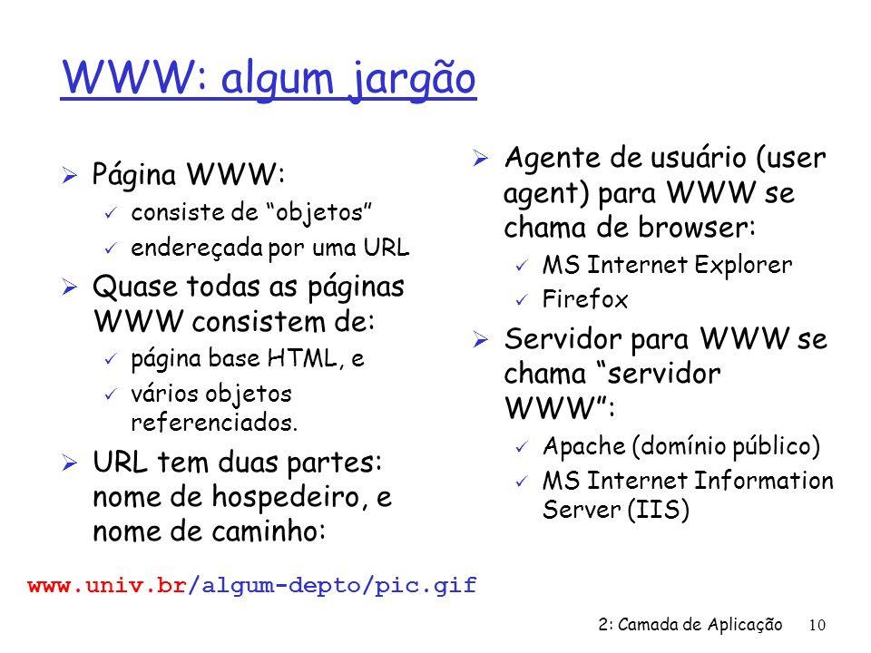WWW: algum jargão Agente de usuário (user agent) para WWW se chama de browser: MS Internet Explorer.