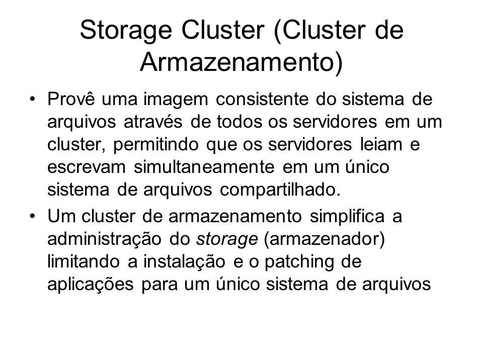 Storage Cluster (Cluster de Armazenamento)