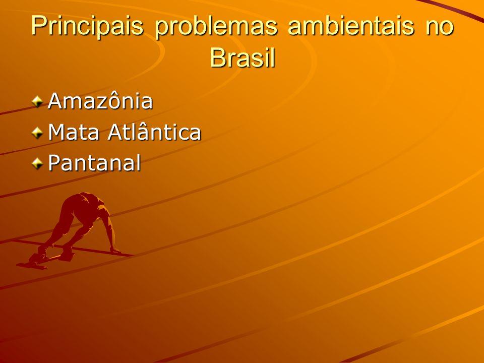 Principais problemas ambientais no Brasil