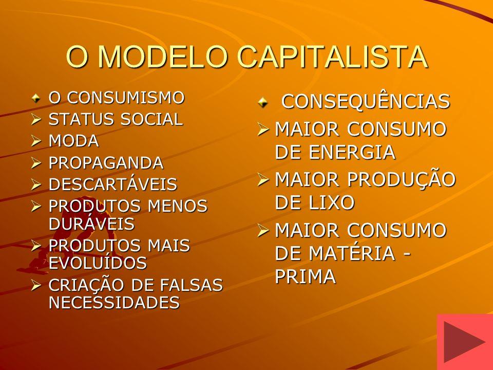 O MODELO CAPITALISTA CONSEQUÊNCIAS MAIOR CONSUMO DE ENERGIA