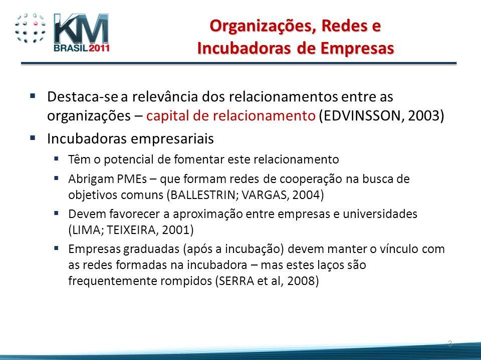 Organizações, Redes e Incubadoras de Empresas