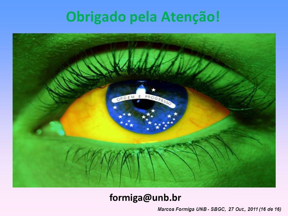 Obrigado pela Atenção! formiga@unb.br