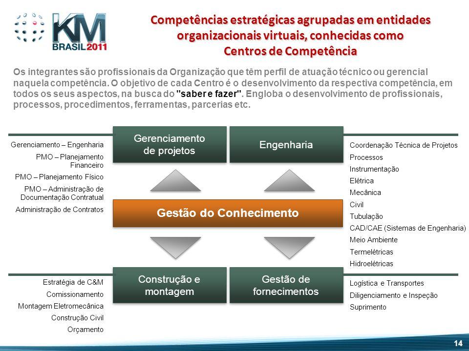 Competências estratégicas agrupadas em entidades