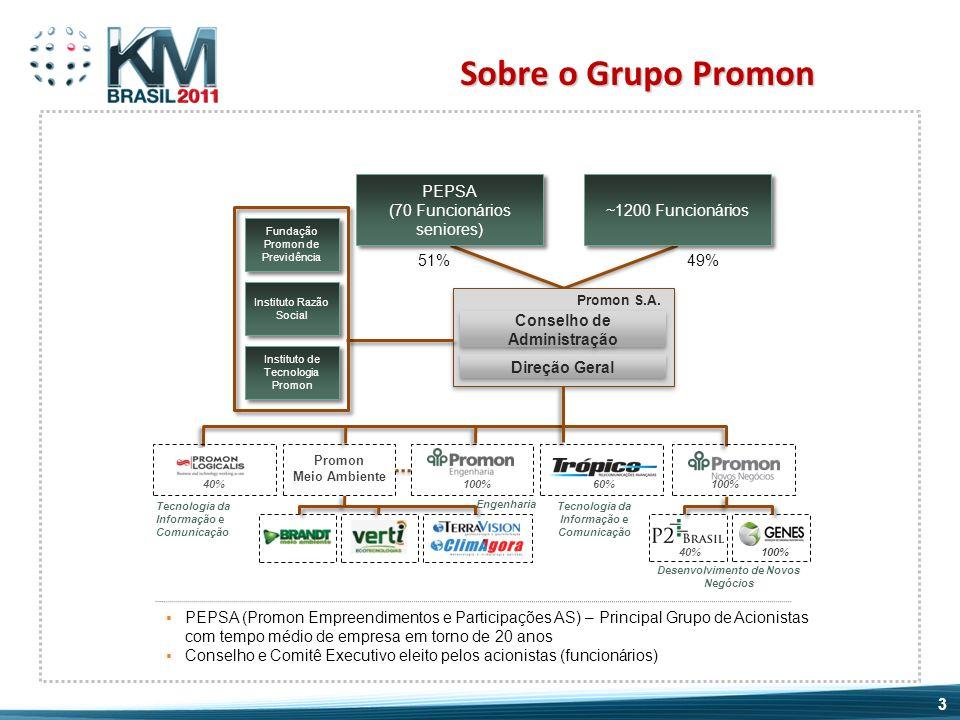 Sobre o Grupo Promon PEPSA (70 Funcionários seniores)