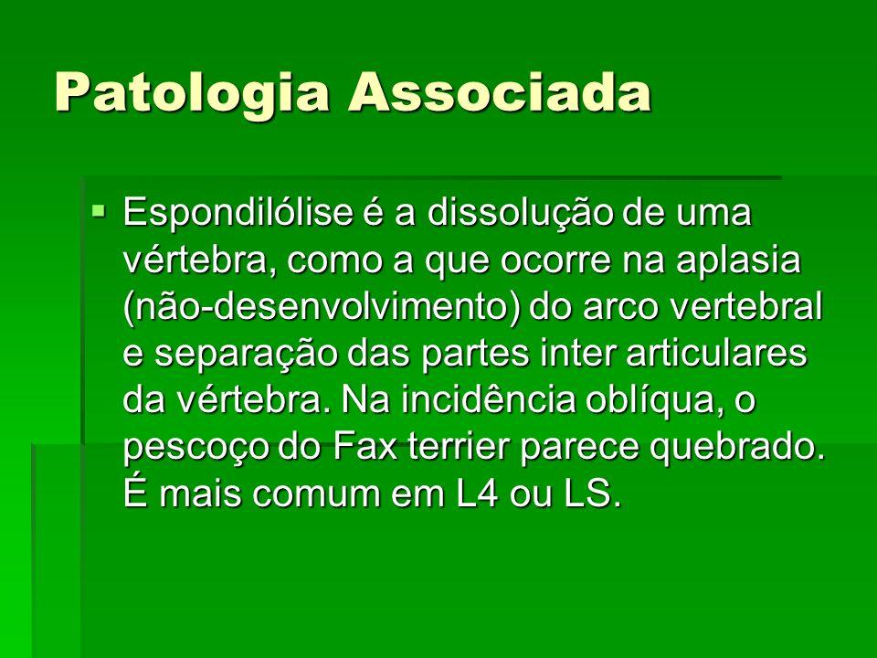 Patologia Associada