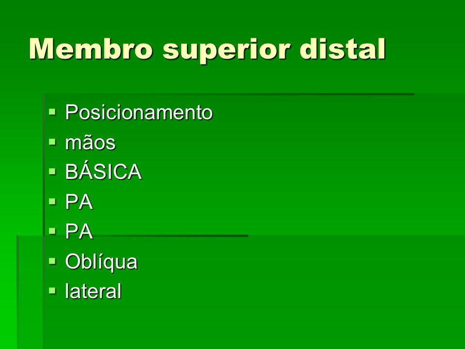 Membro superior distal
