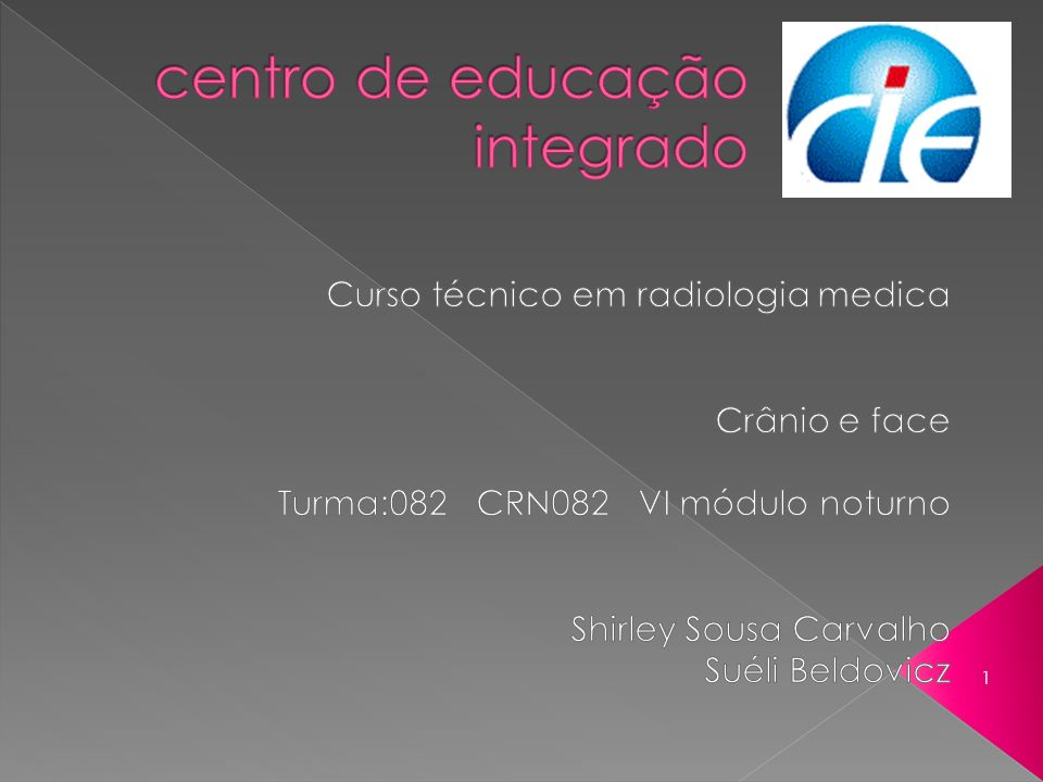 centro de educação integrado