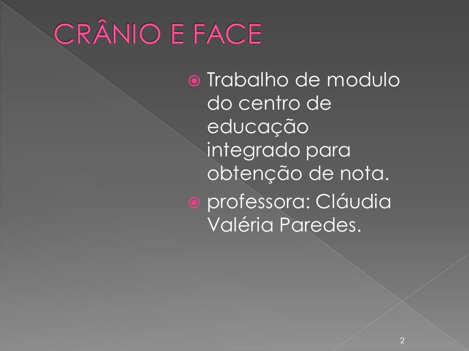 CRÂNIO E FACE Trabalho de modulo do centro de educação integrado para obtenção de nota.
