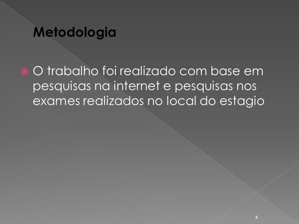 Metodologia O trabalho foi realizado com base em pesquisas na internet e pesquisas nos exames realizados no local do estagio.