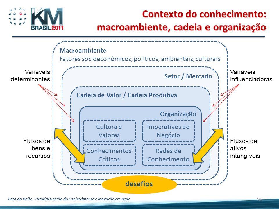 Contexto do conhecimento: macroambiente, cadeia e organização