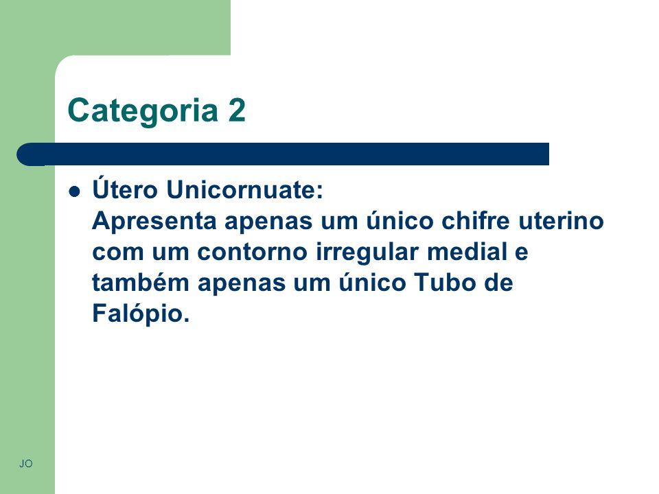 Categoria 2 Útero Unicornuate: Apresenta apenas um único chifre uterino com um contorno irregular medial e também apenas um único Tubo de Falópio.