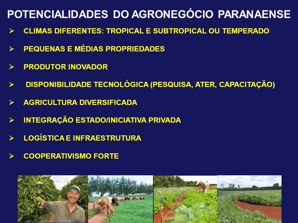 POTENCIALIDADES DO AGRONEGÓCIO PARANAENSE