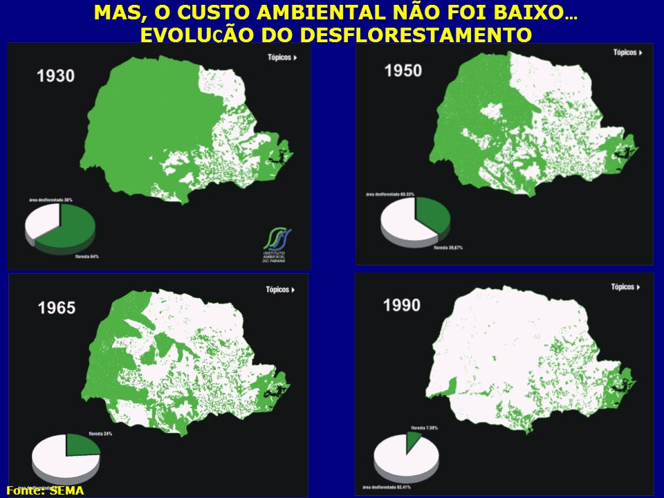 MAS, O CUSTO AMBIENTAL NÃO FOI BAIXO… EVOLUÇÃO DO DESFLORESTAMENTO