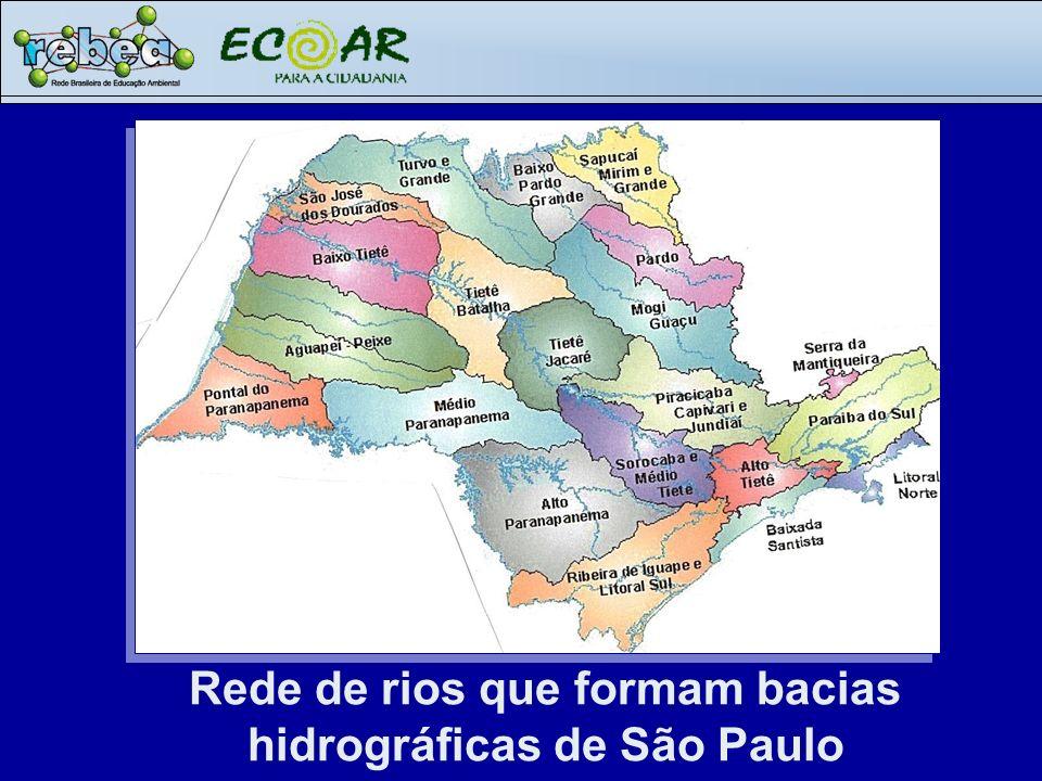 Rede de rios que formam bacias hidrográficas de São Paulo