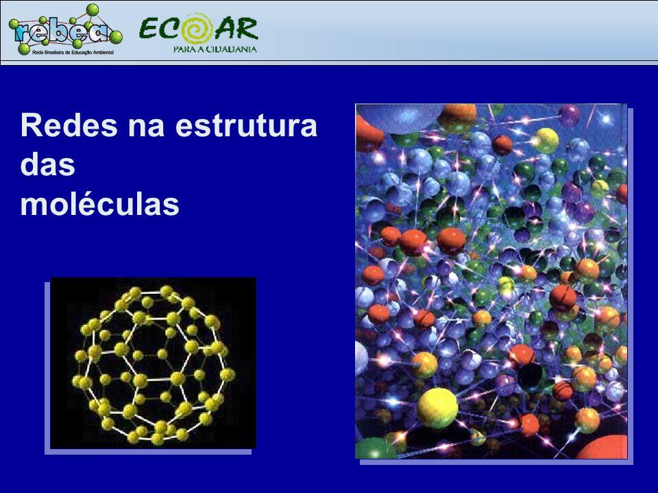 Redes na estrutura das moléculas