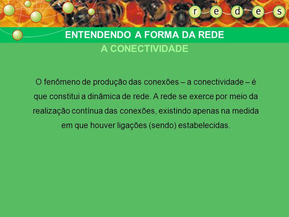 ENTENDENDO A FORMA DA REDE A CONECTIVIDADE