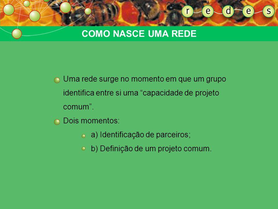 COMO NASCE UMA REDEUma rede surge no momento em que um grupo identifica entre si uma capacidade de projeto comum .