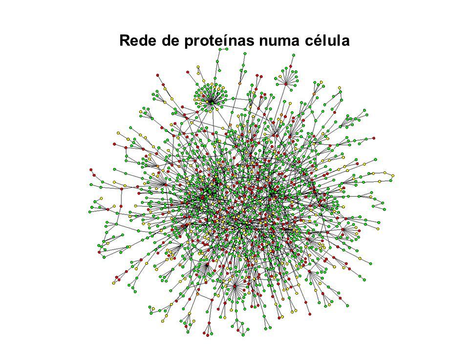Rede de proteínas numa célula