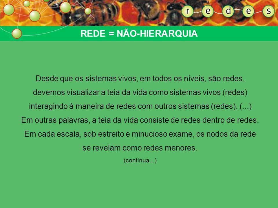REDE = NÃO-HIERARQUIA