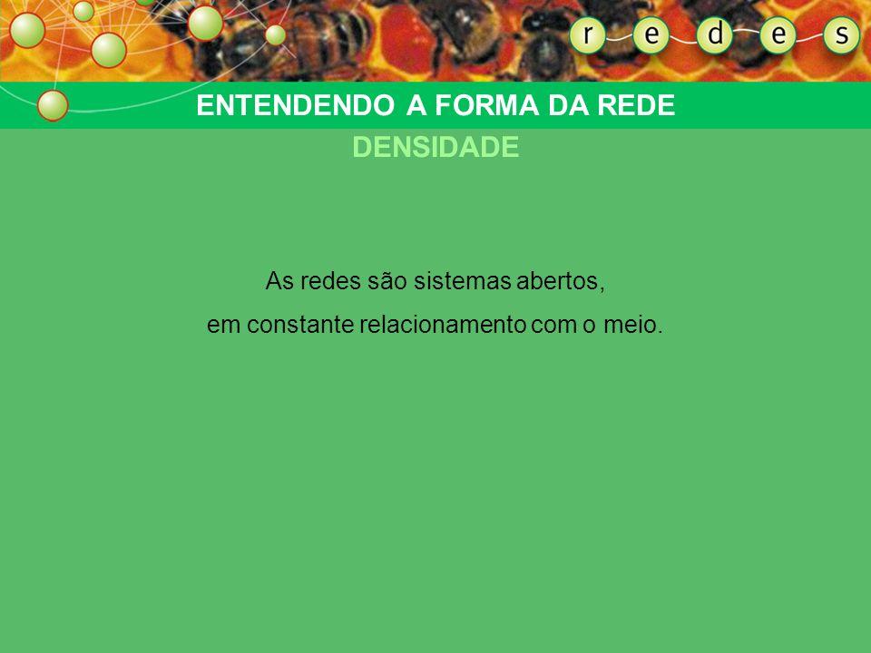ENTENDENDO A FORMA DA REDE